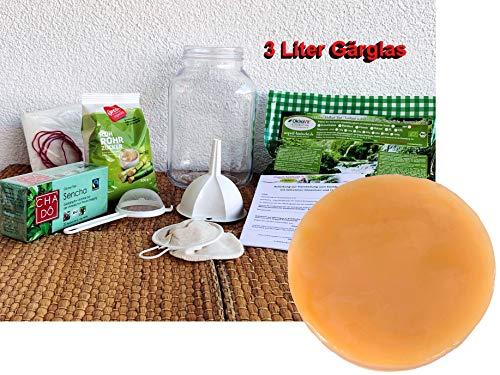 Kombucha-Komplett-Set OkiraVit® Classic-Premium mit 3 L Gärglas, Anleitung und Anwuchsgarantie....
