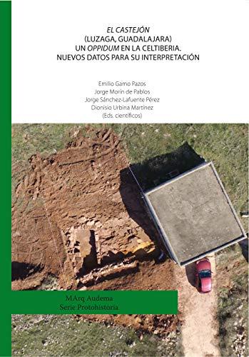 El Castejón (Luzaga, Guadalajara) Un oppidum en la Celtiberia. Nuevos datos para su interpretación (MArq)