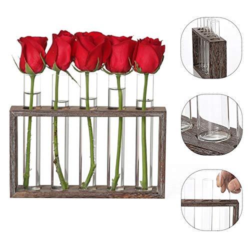 Jour Verre Cadeau Saint-Valentin Test Tube Vase Pots de Fleurs Pot Bonsai Plante hydroponique avec Plateau en Bois Décoration de Table (Color : B2)