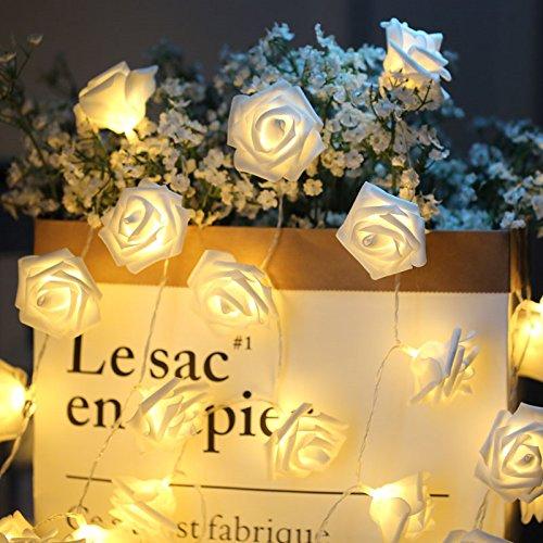 Ghirlanda Luminosa Rose Catena Luminosa Fiore 3M 20 LED LED Rose Alimentata Batteria per Interno Decorazione Festa Compleanno Matrimonio Natale(Bianco Caldo)