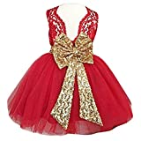 Dresses for Girl Kids Sequins Summr Flower Girl Dress for Weddings Communions Kids A Line Knee Ball Gown Outfits Casual Lace Skirt 9 18 Months(Red, 90)