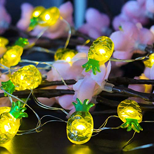 Funpeny Pineapple String Lights, 40 LED Waterproof Indoor Decorative String Lights with Remote and Timer for Bedroom, 10 Feet