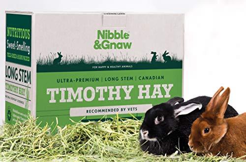 Nibble&Gnaw Timothy Heu. Das natürliche Wunderfutter für Ihr Kaninchen oder Meerschweinchen. Schönes, frisch, grün, langstielige, Ultra-Premium, kanadisches Heu, um sie gesund & glücklich | 3.2kg