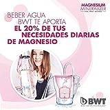 BWT Wasserfilter Magnesium Mineralizer, Pack mit 12Stück,Versorgung für 1Jahr - 6