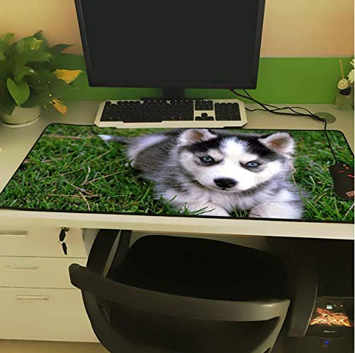 Animal Large Size Mouse Pad Lock Side Sled Dog Cute Blue Eyes Husky Pattern Laptop Pc Table Mat Rubber 300 * 800 * 3Mm
