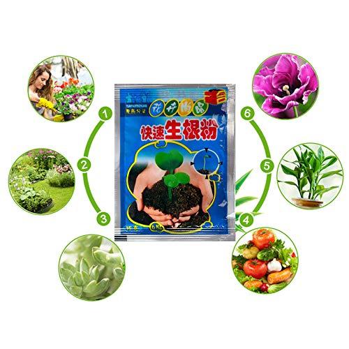 RHG Pflanzenblumen-Wurzelpulver, Wurzelhormon-Konzentrat, beschleunigt das Wachstum, stimuliert die Wurzeln für alle Pflanzensorten, Wachstumsmedien, einschließlich Hydrokulturen