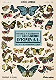 Oiseaux et papillons de l'imagerie d'Epinal - Inclus 15 planches détachables
