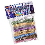Rexlace Variety Pack - Holographic Core Colors - 300 Feet Plastic Craft Lacing