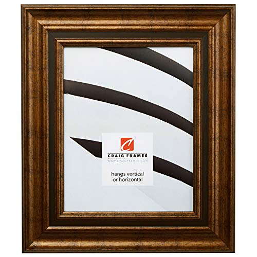 Craig Frames 81285100 18 by 24-Inch Picture Frame, Solid Wood, 2.5-Inch Wide, Aged Gold