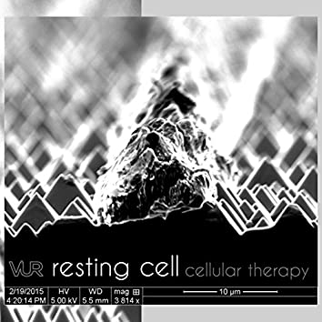 Cellular Therapy