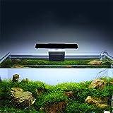 Cryfokt Lampada a Clip Leggera a LED Lampada Ecologica per Piante acquatiche Illuminazione per Acquario Lampada per Acquario con Clip per Acquario Serbatoio per Pesci d'Acqua Dolce per Allevamento