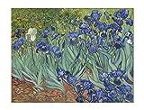 ART ALPHA - Kunstdruck - Vincent Van Gogh - Iris