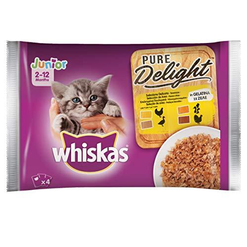 Whiskas Pure Delight in Gelatina Delicato Junior, Multi Gusto, 4 x 85 g, Cibo per Gatto 0-12 Mesi, 13 Confezioni (52 Bustine in Totale)
