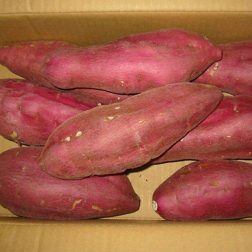 徳島県産さつまいも 鳴門金時芋 3Lサイズ 約5kg詰め