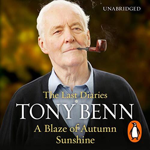 A Blaze of Autumn Sunshine cover art