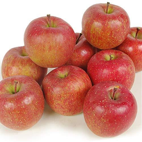 国華園 食品 りんご 青森産 蜜入りふじ 10kg 1箱