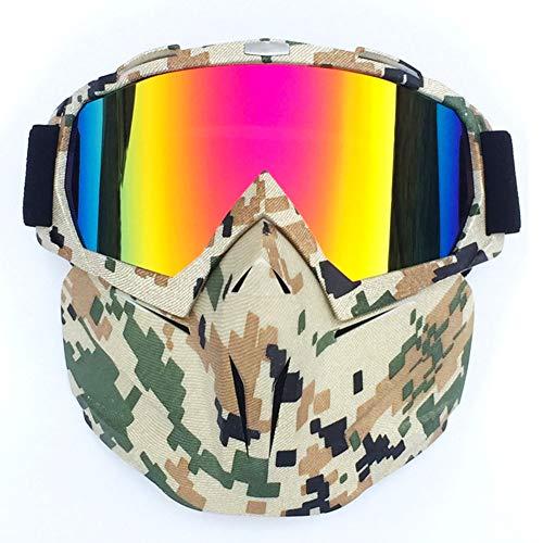 Alician Retro Outdoor Cycling Mask Goggles Motocross Ski Snowboard Snowmobile Face Mask Shield...