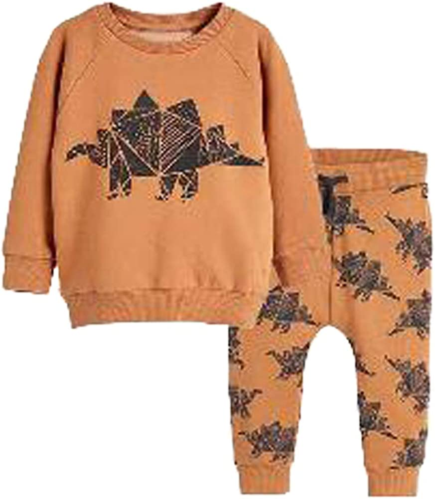 Toddler Baby Boy Clothing 2Pcs Set Little Dinosaur Printed Long Sleeve Tops and Pants Kids Outfits