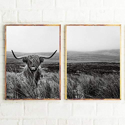 xwwnzdq 2 stücke Highland Cow Print und Poster Nutztier Wandkunst Schottische Kuh Leinwand Malerei Schwarz Weiß Bilder Für Bauernhaus Küche Decor 60x80cmx2 Unframed