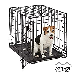What Size Crate Do I Need For A 10 lb Dog? Dogsized