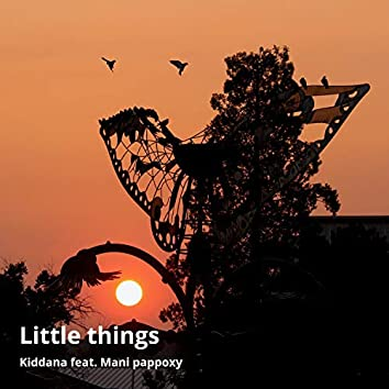 Little Things (feat. Mani Pappoxy)