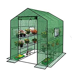 ENSTVER Reinforced Walk-in Greenhouse with Window Review.