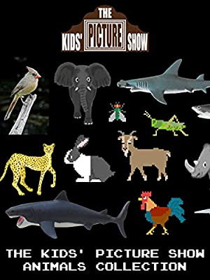 The Kids' Picture Show - Animals Collection
