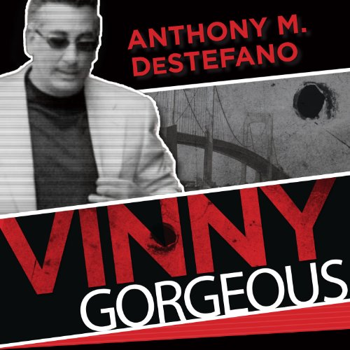 Vinny Gorgeous audiobook cover art