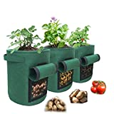 Eco Friendly Potato Grow Bags Set of 3 – 10 Gallon Grow Bags – Premium Felt Planting Bags for Vegetables – 400GSM Density for Ultra-Strong Load Sturdy Handles and Visualization Window