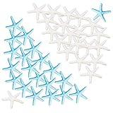 Aweisile 40 pezzi Stelle Marine per decorazioni Finger Starfish Decorative Stelle Marine in resina per Decorazioni di Matrimoni Home Decor la casa Natale Feste e Progetto Artigianale progetti creativi