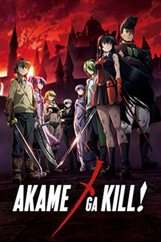 """Akame ga Kill!: Writing Journal, Notebook for drawing and Doodling & sketching, Gift for Kids ages 3,6 - 8,12 Lined Notebook (6"""" x""""9 100 Pages) Soft Cover, Matte Finish"""