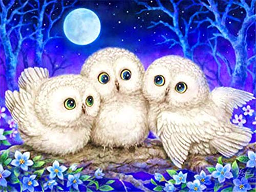 DIY 5D Diamond Painting Kits Full Drill,Crystal Rhinestone Cross Stitch Diamond Painting Adults/Kids Mosaic Pictures Embroidery Art Craft for Home Wall Decor(Moon Owl 60x70cm/24x28in Square Drill)