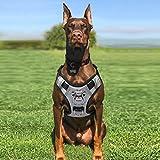 BABYLTRL Silver Big Dog Harness No-Pull Anti-Tear Adjustable Pet Harness Reflective Oxford Material...