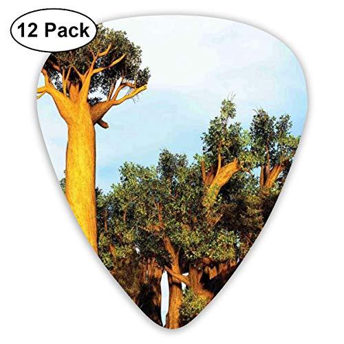 Gitaar Picks12 stks Plectrum (0.46mm-0.96mm), Afrikaanse Baobab bomen Oosterse Flora Fotografie Inheemse Planten, Voor Uw Gitaar of Ukulele
