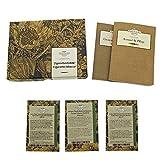 Magic Garden Seeds Tabaco para Cigarrillos - Semillas-Set de Regalo con 3 variedades de Tabaco adecuadas para Sus propias Mezclas de Cigarrillos