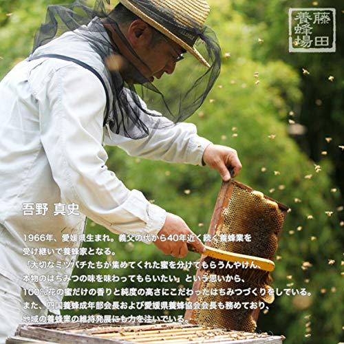 藤田養蜂場 国産 はちみつ 草原の味わい 日本のはちみつ 愛媛県産 野の花 蜂蜜