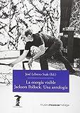 La energía visible. Jackson Pollock. Una antología (La balsa de la Medusa)