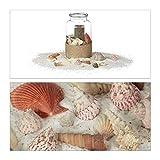 Relaxdays Muschel Deko Mix, Set mit Meeresschnecken, Dekomuscheln, echte Stranddeko zum Basteln, Badezimmer, 500 g, bunt - 6