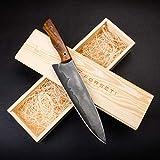 Forseti Steel Kodiak 8' San Mai Steel Chef Knife with Wood Handle