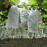 100 Unids Uvas de Jardín Bolsa de Protección de Frutas para Fruta Bosque Vegetal Cama Flor de Control de Plagas Bolsa de Malla Aislamiento de Insectos Red Bolsa de Barrera(240 * 350mm)