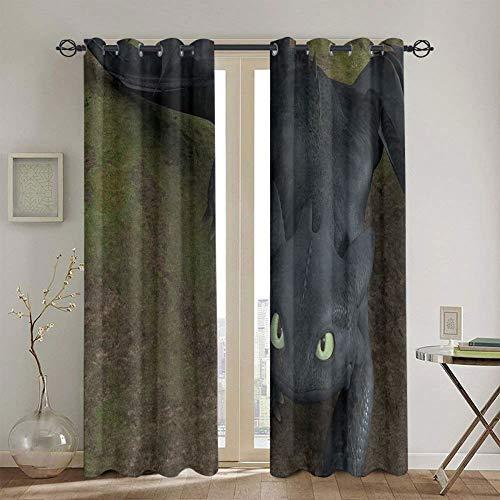 Par de paneles de cortina para ventana para dormitorio, Cómo entrenar a tu dragón, cortinas de oscurecimiento con aislamiento térmico para sala de estar, 160 x 183 cm