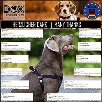 DDOXX Harnais Chien Step-in Nylon, Réglable | Nombreuses Couleurs & Tailles | pour Petit, Moyen Gros & Grand | Harnais de Poitrine Chat Chiot | Violet Pourpre, XXS