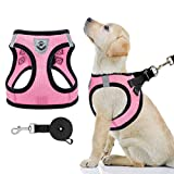 Best Dog Harnesses - PAWCHIE Puppy Harness and Leash Set - Soft Review