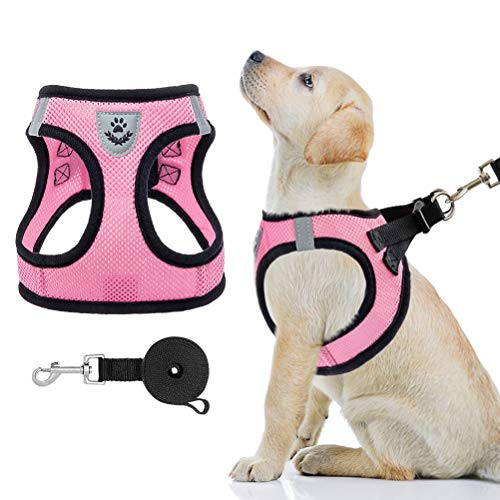 PAWCHIE Puppy Harness and Leash Set - Soft Mesh Dog Vest Harness, Reflective & Adjustable Harness for Small to Medium Dogs, Cats and Puppies