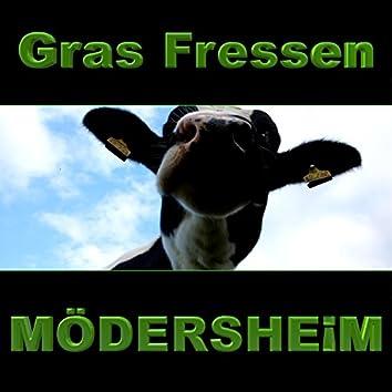Gras Fressen