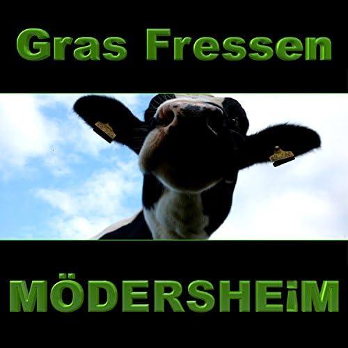 Mödersheim