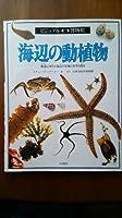 海辺の動植物 (ビジュアル博物館)