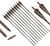 DZGN 31 Pulgadas de Tiro con Arco de Carbono Flechas de Madera Camo del Eje de la Espina Dorsal 400 con 4 Pulgadas Feather Fletching y Consejos Target para el Compuesto Recurve Arcos (Paquete de 12)