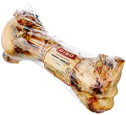DIBO Mamut-Knochen, ca. 40cm, 1 Stück, der große Naturkau-Snack oder Leckerli für Zwischendurch, Hundefutter, Qualitätskauartikel ohne Chemie von DIBO