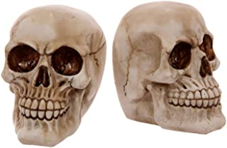 Egg n Chips London - Gruesome Skull Pair of Bookends Ornament